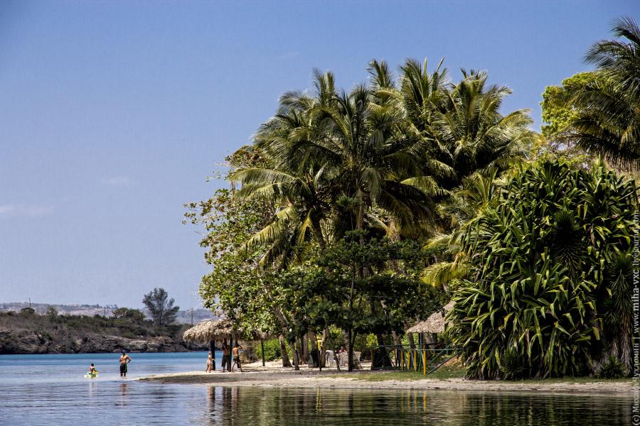 Природа Кубы