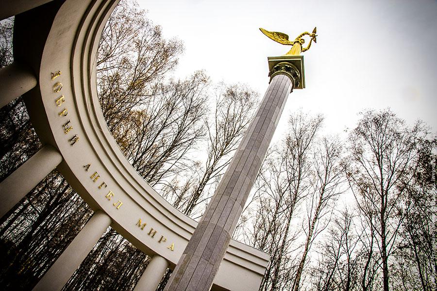 Дмитров Парк Березовая Роща