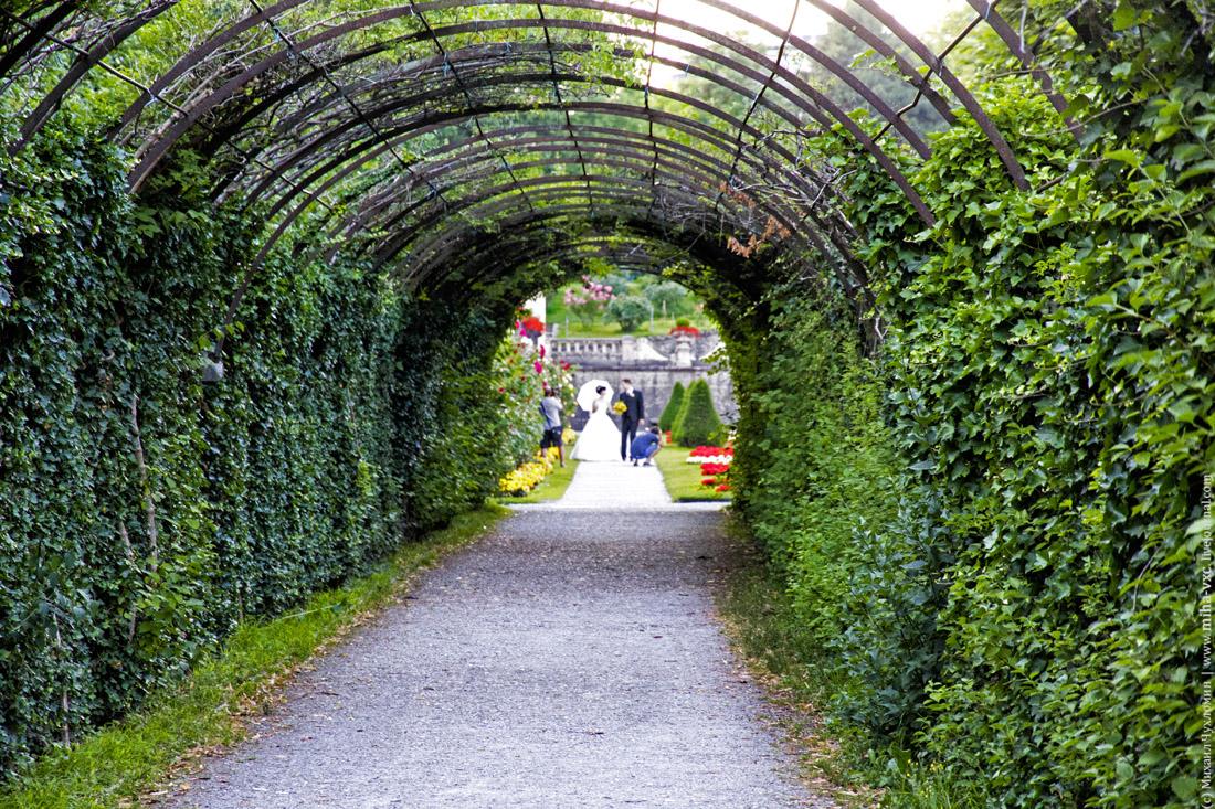 Свадьба в Зальцбурге