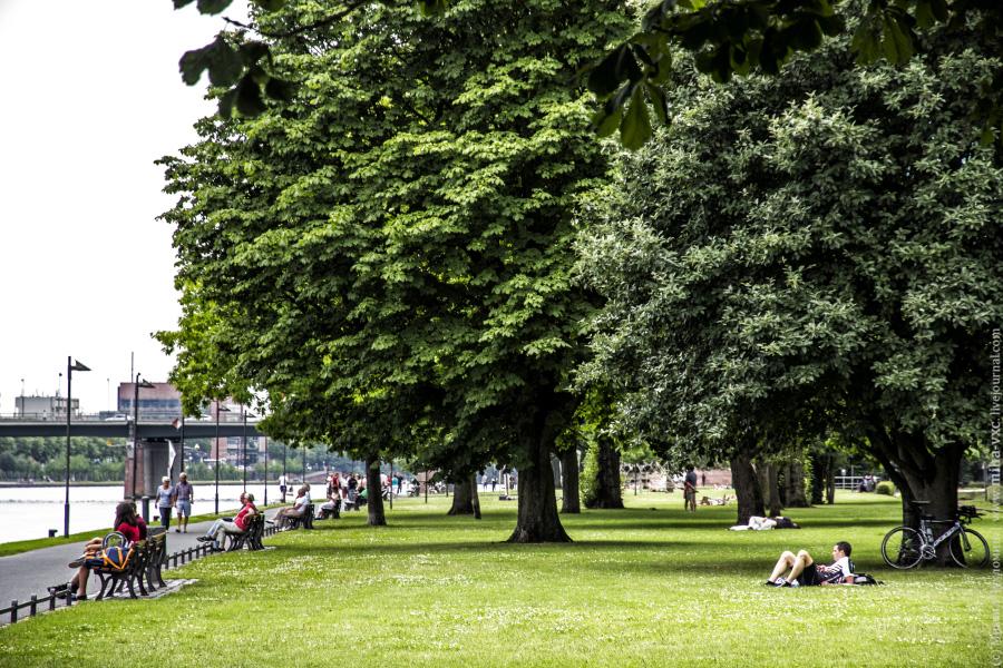 Парк на берегу реки Майн