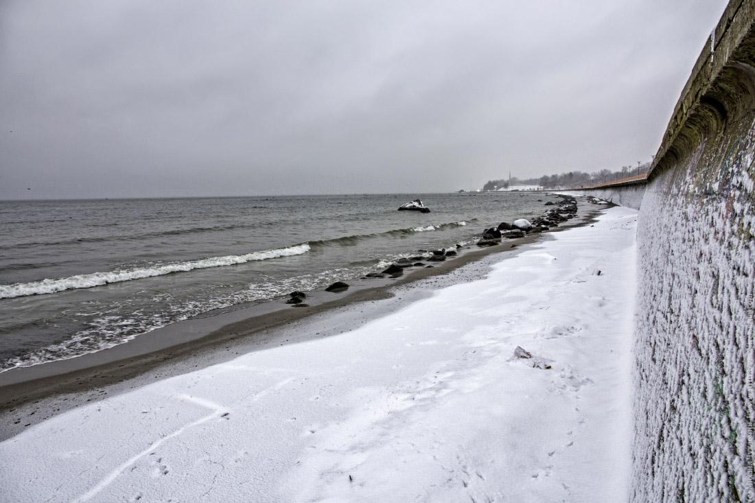 Финского залива
